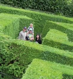 Fusjqeabzie Amazing Hedge Puzzle