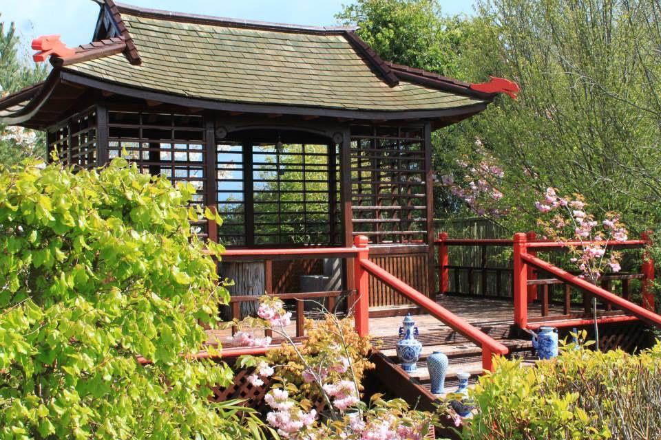 Glenavon Japanese Themed Garden